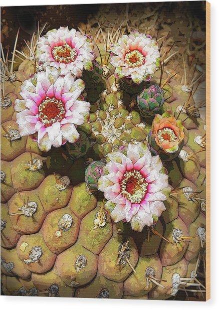 Beauty In The Desert Wood Print