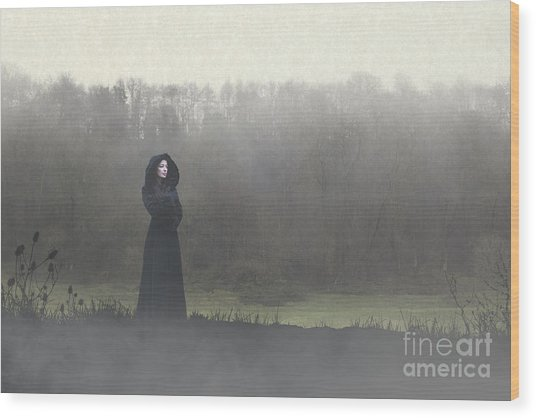 Beauty In The Fog Wood Print