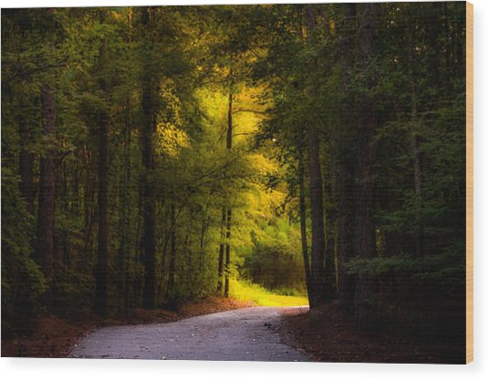 Beauty In The Forest Wood Print