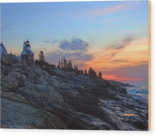 Beauty On The Rocks Wood Print