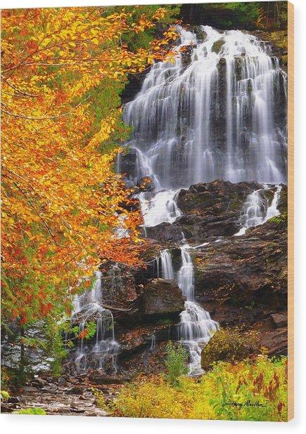 Beaver Brook Falls Wood Print