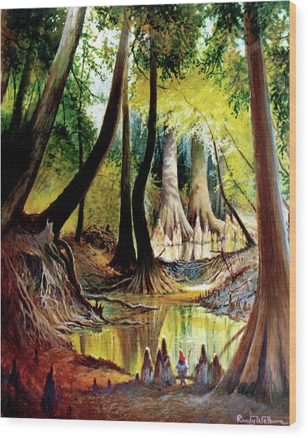 Beaver Dam On Village Creek Wood Print