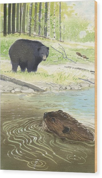 Beaver Wood Print by Denny Bond