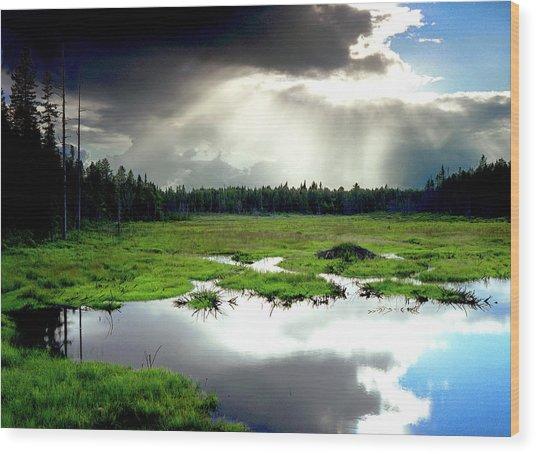 Beaver Meadow Wood Print