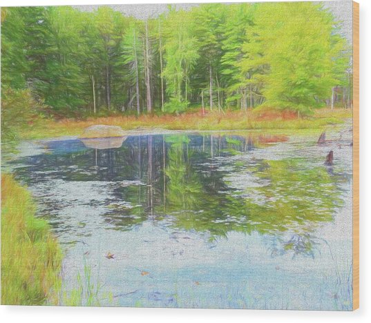 Beaver Pond Reflections Wood Print
