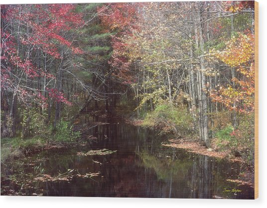 Beaver's Haunt Wood Print