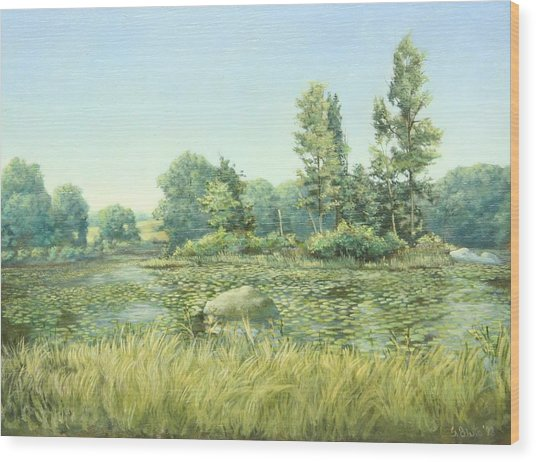 Beavor Pond Wood Print by Stephen Bluto