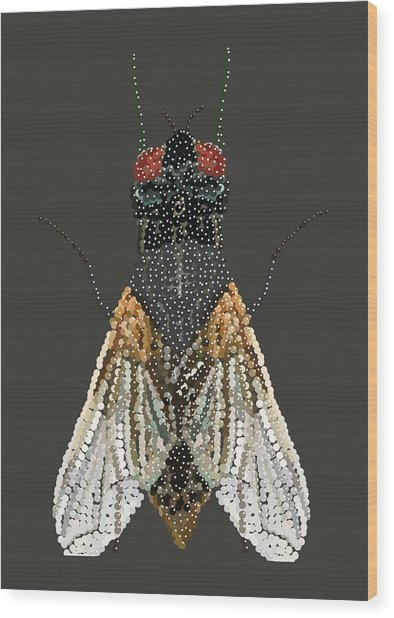 Bedazzled Housefly Transparent Background Wood Print