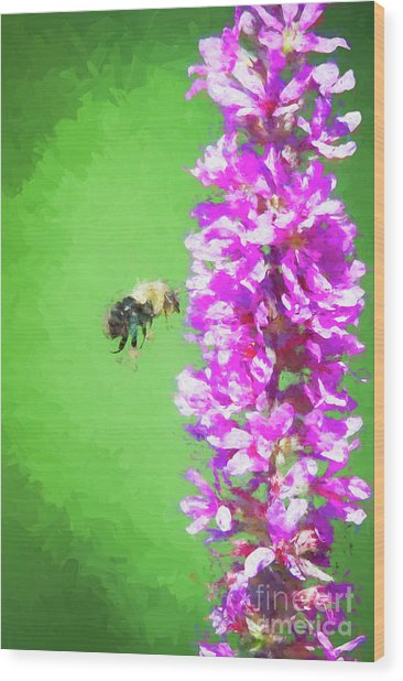 Bee Kissing A Flower Wood Print