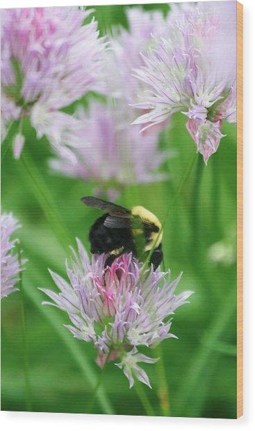 Bee Wood Print by Melanie Beasley