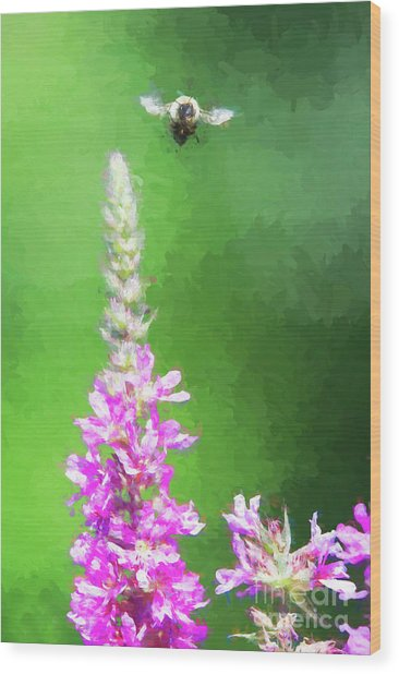 Bee Over Flowers Wood Print
