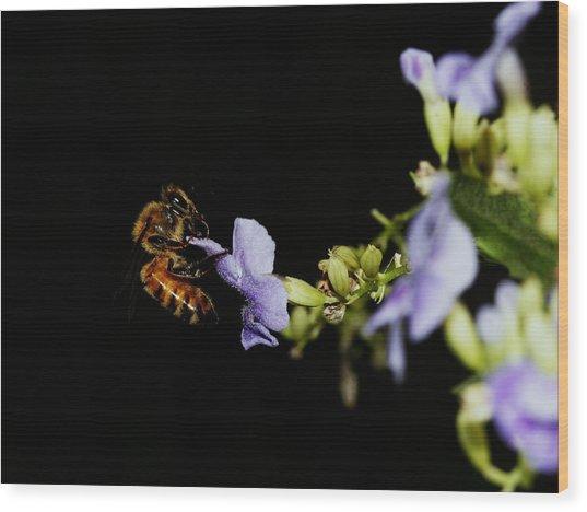 Bee Portrait Wood Print