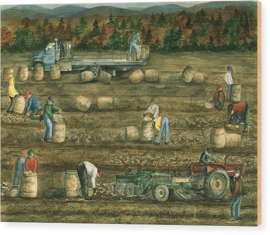 Been There Done That In Aroostook County Wood Print