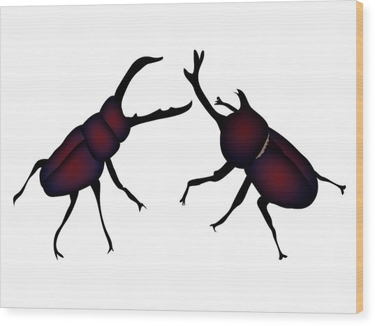 Beetle And Stag Beetle Wood Print