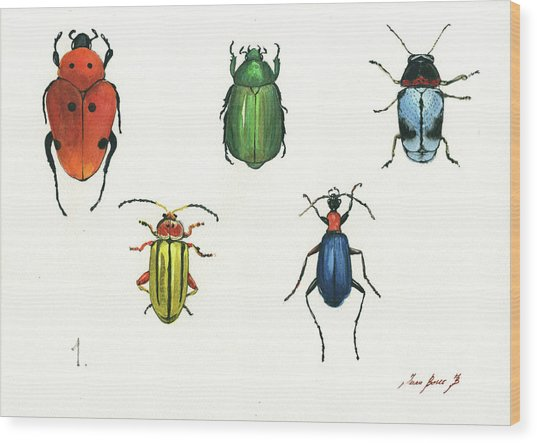 Beetles Wood Print