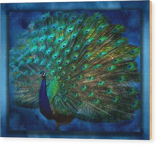 Being Yourself - Peacock Art Wood Print