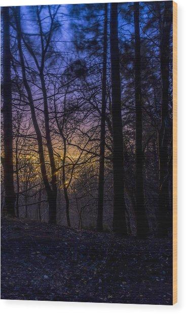 Belfast Through The Trees Part 1 Wood Print