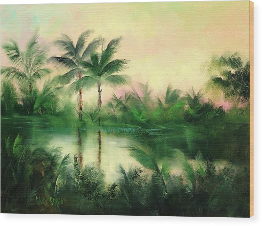Belize River Wood Print by Sally Seago