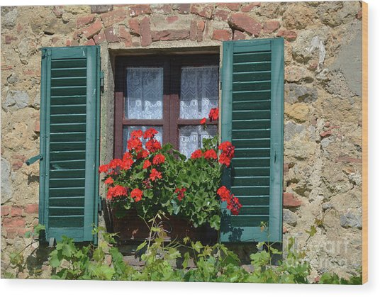 Bella Italian Window  Wood Print