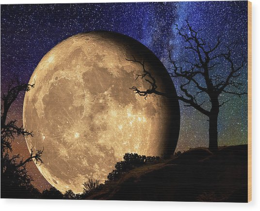 Bella Luna From Another World Wood Print