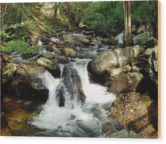 Below Anna Ruby Falls Wood Print