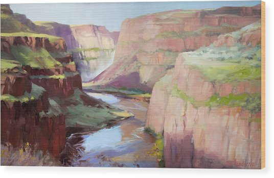 Below Palouse Falls Wood Print