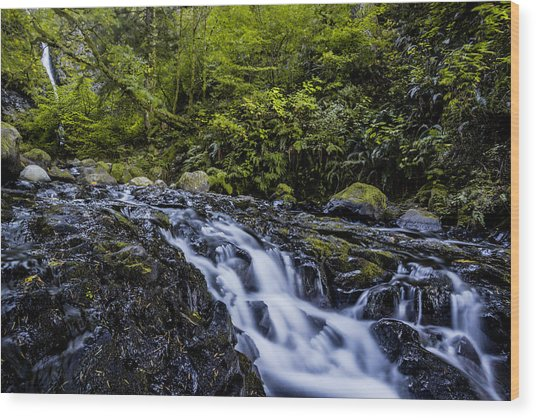Below Pony Tail Falls Wood Print