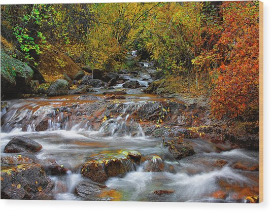 Below The Waterfall Wood Print