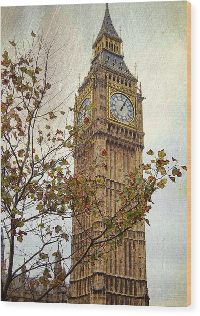 Ben In Autumn Wood Print by JAMART Photography