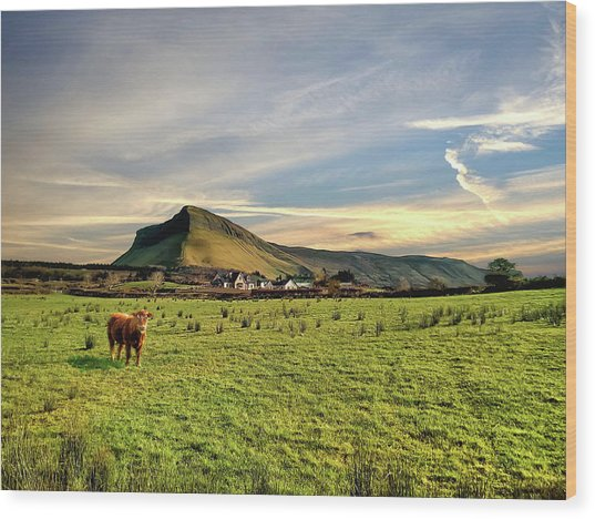 Benbulben From Henry's Bar Wood Print