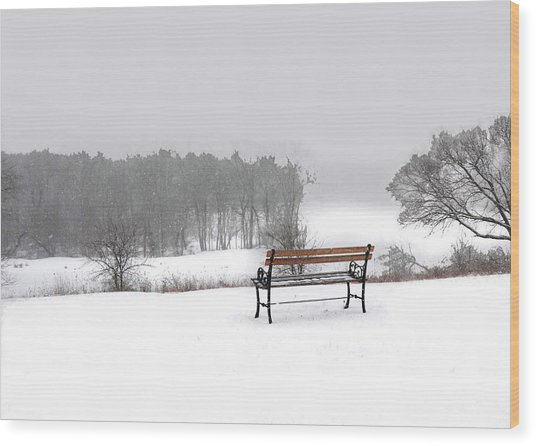 Bench In Snow Wood Print