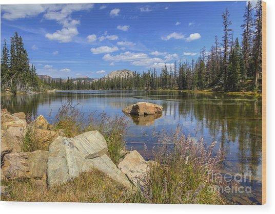 Bench Lake Wood Print