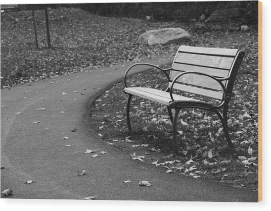 Bench On The Walk Wood Print