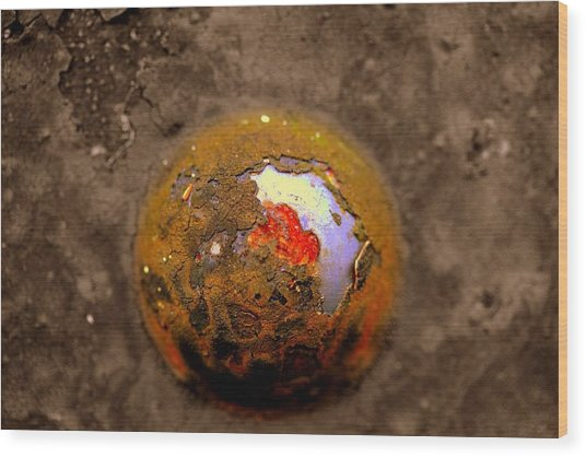 Beneath The Surface Wood Print by Susan Moore