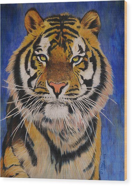 Bengal Tiger Wood Print by Don MacCarthy