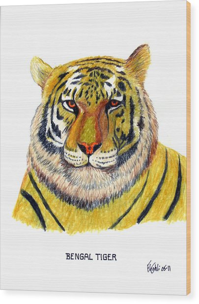 Bengal Tiger Wood Print by Frederic Kohli