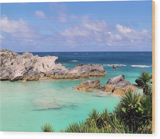 Bermuda Seascape Wood Print