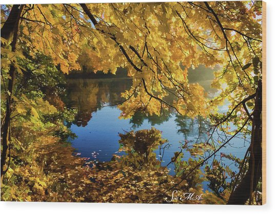 Bernharts Dam 15-244 Wood Print