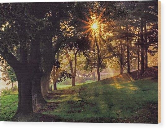 Bernharts Dam Fog 001 Wood Print