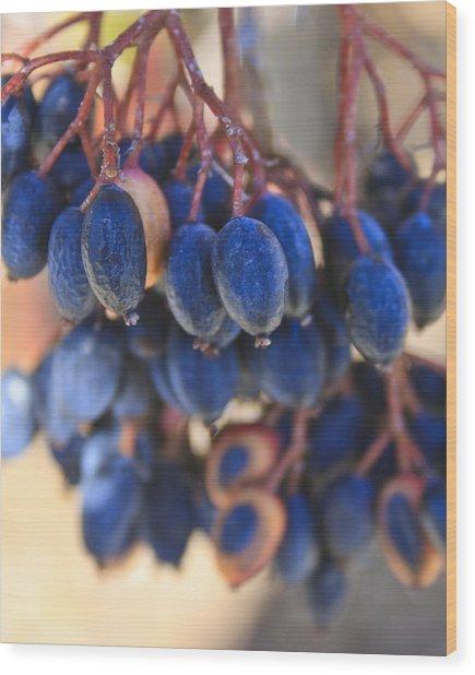 Berries Blue Too Wood Print