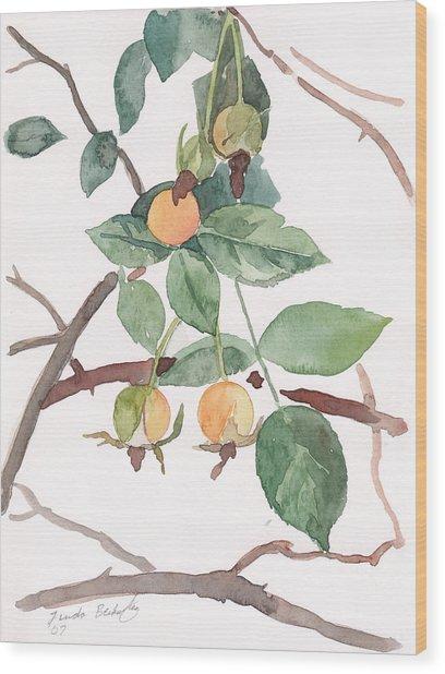 Berries In Pink Light Wood Print by Linda Berkowitz