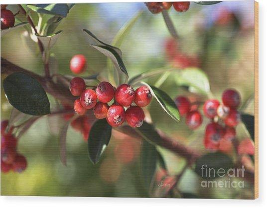 Berry Delight Wood Print