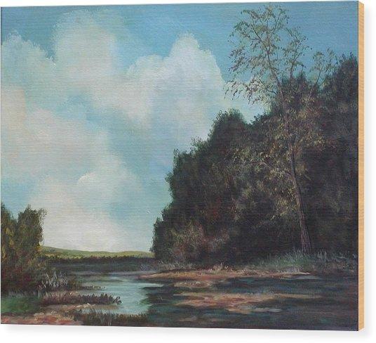 Beside Still Waters Wood Print by Sharon Steinhaus