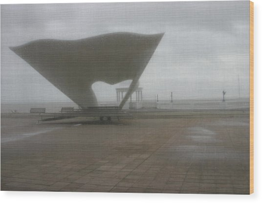 Bexhill 10 Wood Print by Jez C Self