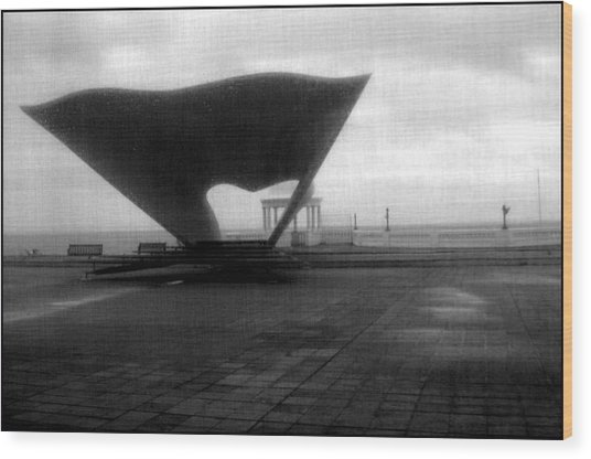 Bexhill 11 Wood Print by Jez C Self