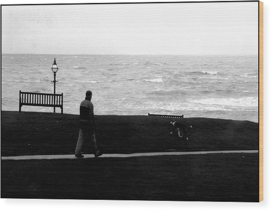 Bexhill 18 Wood Print by Jez C Self