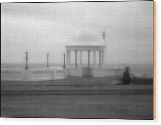 Bexhill 9 Wood Print by Jez C Self