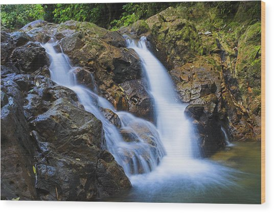 Bexon Waterfall In Color- St Lucia  Wood Print