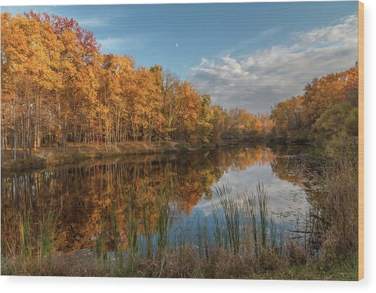 Beyer's Pond In Autumn Wood Print
