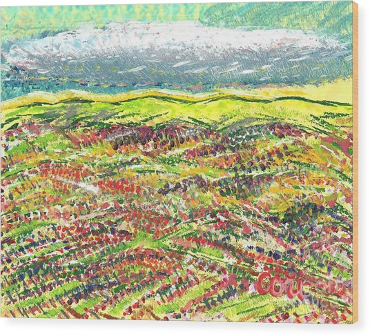 Beyond The Foothills Wood Print